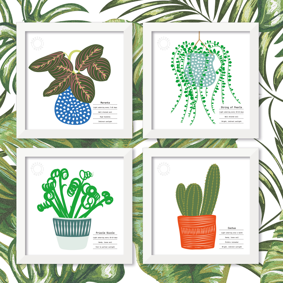 Plant Survival Guides